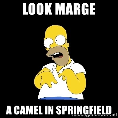 look-marge - LOOK MARGE A CAMEL IN SPRINGFIELD