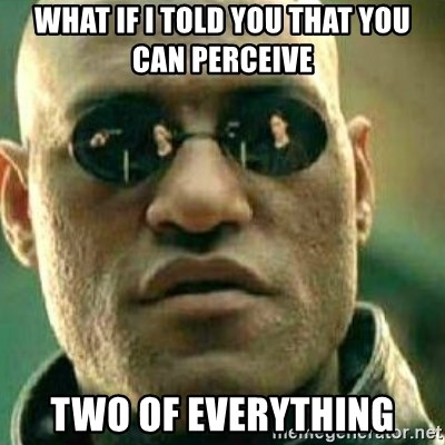 What If I Told You - what if i told you that you can perceive two of everything