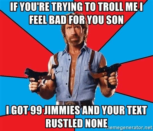 Chuck Norris  - IF YOU'RE TRYING TO TROLL ME I FEEL BAD FOR YOU SON I GOT 99 JIMMIES AND YOUR TEXT RUSTLED NONE