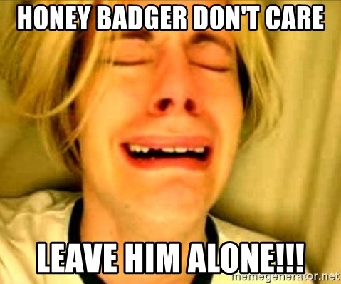 Leave Brittney Alone - honey badger don't care leave him alone!!!
