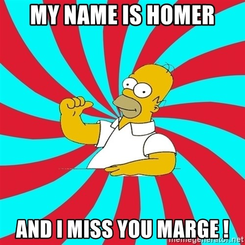 Frases Homero Simpson - my name is homer and i miss you marge !