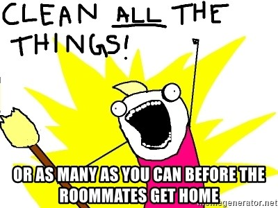 clean all the things -  or as many as you can before the roommates get home