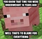 Minecraft PIG - you know that time you were underweight 16 years ago well thats to blame for everything