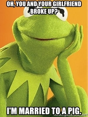 Kermit the frog - oh, you and your girlfriend broke up? i'm married to a pig.