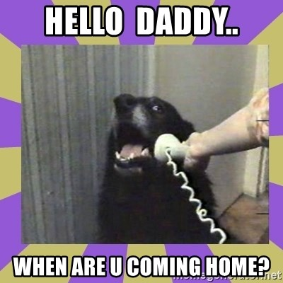 Yes, this is dog! - Hello  daddy.. When are u coming home?