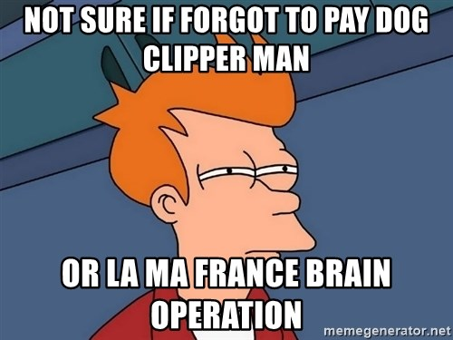 Futurama Fry - Not sure if forgot to pay dog clipper man Or la Ma France brain operation