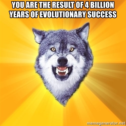Courage Wolf - You are the result of 4 billion years of evolutionary success
