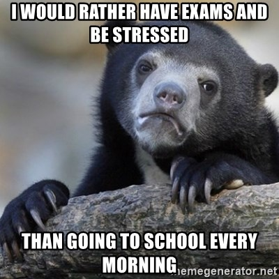 Confession Bear - I WOULD RATHER HAVE EXAMS AND BE STRESSED THAN GOING TO SCHOOL EVERY MORNING
