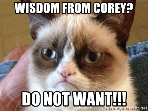 Angry Cat Meme - wisdom from corey? do not want!!!