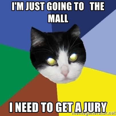 Winnipeg Cat - I'm just going to   the mall I need to get a jury
