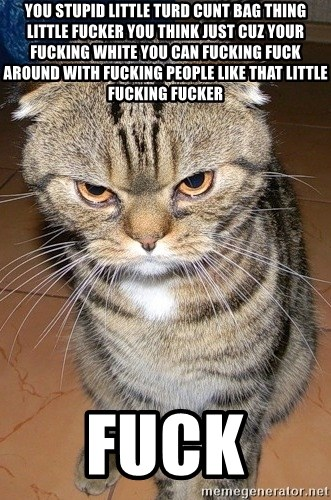 angry cat 2 - you stupid little turd cunt bag thing little fucker you think just cuz your fucking white you can fucking fuck around with fucking people like that little fucking fucker  fuck
