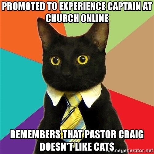 Business Cat - Promoted to experience captain at Church Online Remembers that Pastor Craig doesn't like cats