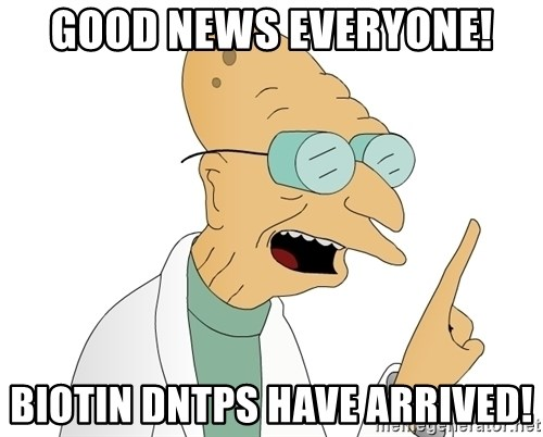 Good News Everyone - Good News Everyone! Biotin DNTPs have arrived!