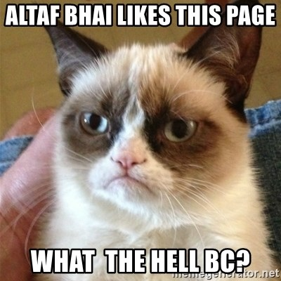 Grumpy Cat  - altaf bhai likes this page what  the hell bc?