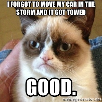 Grumpy Cat  - i forgot to move my car in the storm and it got towed good.