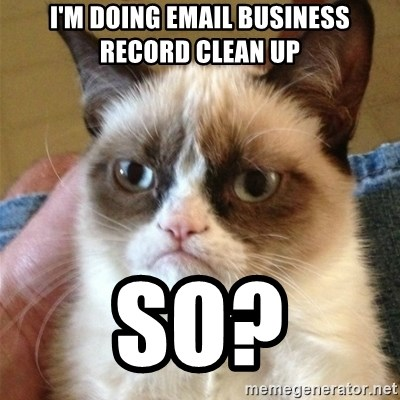 Grumpy Cat  - I'm doing email business record clean up so?