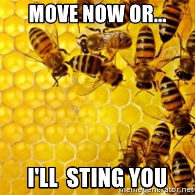 Honeybees - Move now Or... I'll  sting you