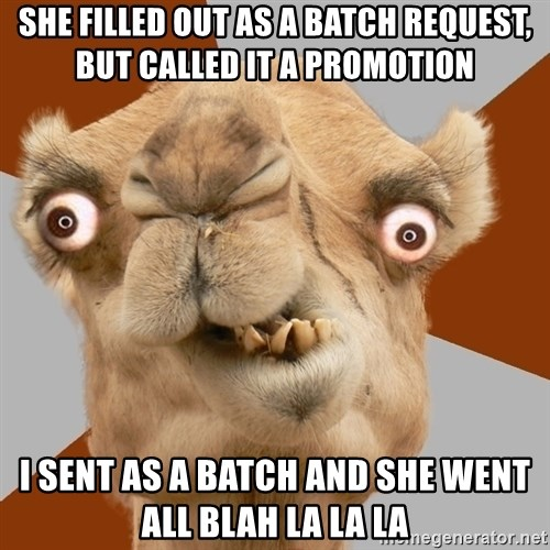 Crazy Camel lol - she filled out as a batch request, but called it a promotion i sent as a batch and she went all blah la la la