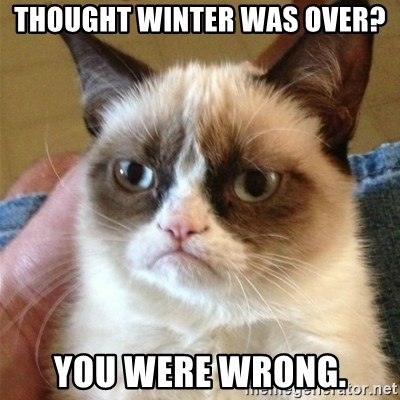 Grumpy Cat  - Thought winter was over? You were wrong.