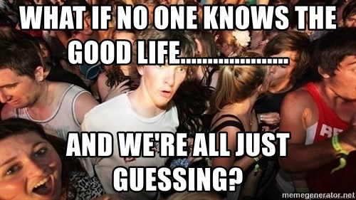 Sudden Realization Ralph - What if no one knows the good life.................... and we're all just guessing?