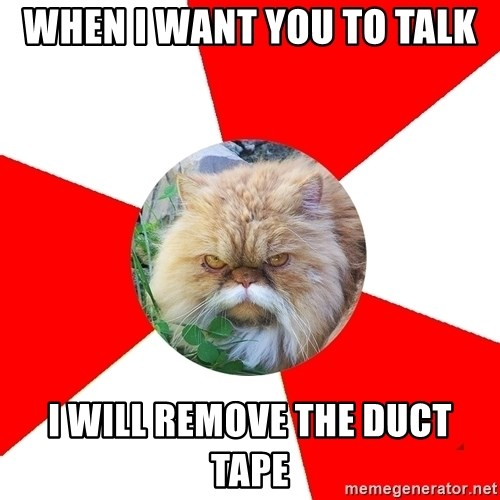 Diabetic Cat - WHEN I WANT YOU TO TALK I WILL REMOVE THE DUCT TAPE