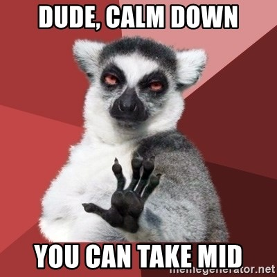 Chill Out Lemur - dude, calm down you can take mid