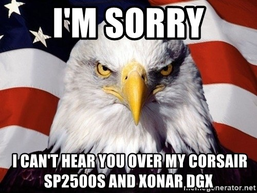 American Pride Eagle - I'm Sorry  I CAN'T HEAR YOU OVER MY Corsair SP2500s and XonAR DGX