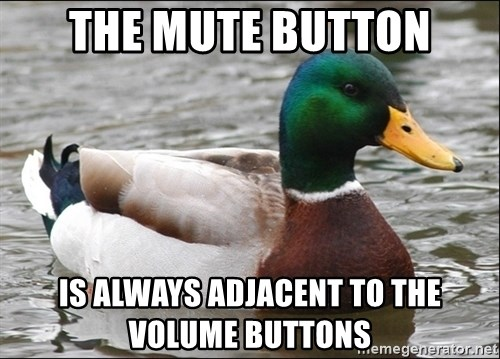 Actual Advice Mallard 1 - The mute button is always adjacent to the volume buttons