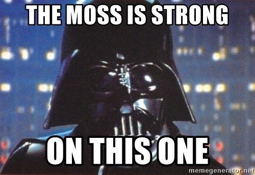 Darth Vader - The moss is strong on this one