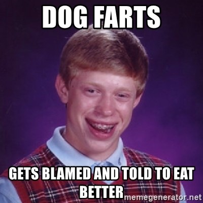 Bad Luck Brian - dog farts gets blamed and told to eat better