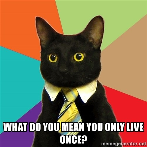 Business Cat -  What do you mean You only live once?