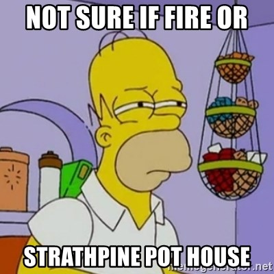 Simpsons' Homer - NOT SURE IF FIRE OR STRATHPINE POT HOUSE