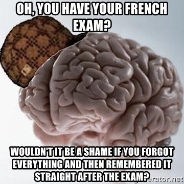 Scumbag Brain - Oh, you have your French exam? Wouldn't it be a shame if you Forgot everything and then remembered It straight after thE exam?