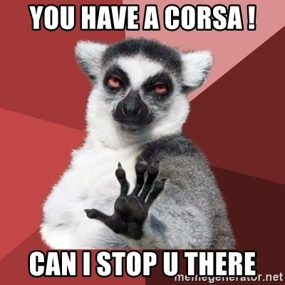 Chill Out Lemur - you have a corsa ! can I stop u there