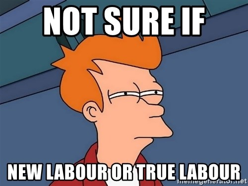 Futurama Fry - not sure if  new labour or true labour