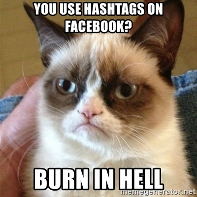 Grumpy Cat  - You use Hashtags on Facebook? Burn in hell