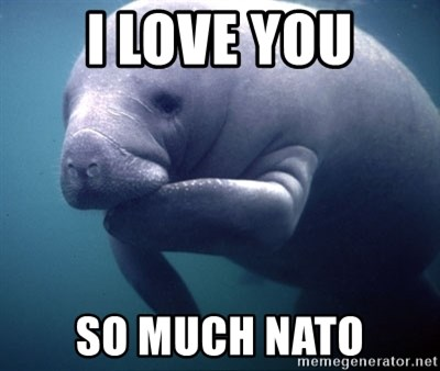 fat positive manatee - I love you so much nato