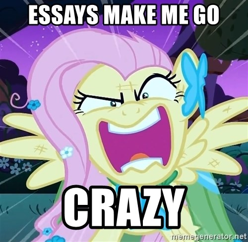 angry-fluttershy - essays make me go crazy