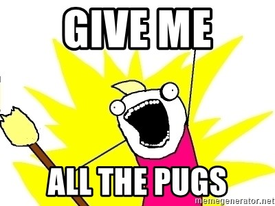 X ALL THE THINGS - Give me ALL THE pugs