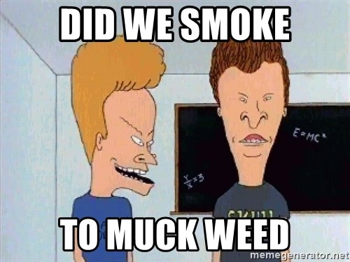 Beavis and butthead - DID WE SMOKE TO MUCK WEED