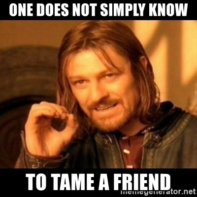 Does not simply walk into mordor Boromir  - one does not simply know to tame a friend