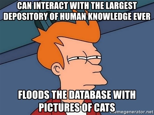Futurama Fry - Can Interact with the largest depository of human knowledge ever Floods the database with pictures of cats