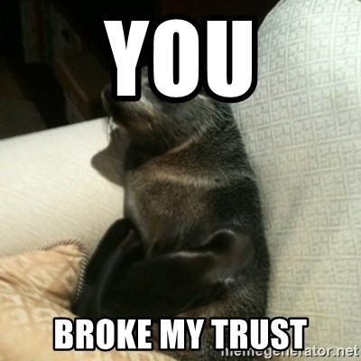 Baby Seal On Couch - You Broke My Trust