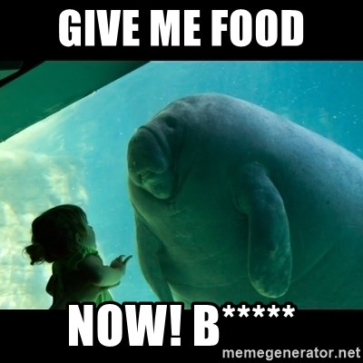 Overlord Manatee - GIVE ME FOOD  NOW! B*****