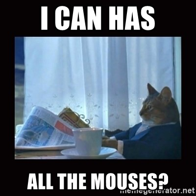 i should buy a boat cat - I can has all the mouses?