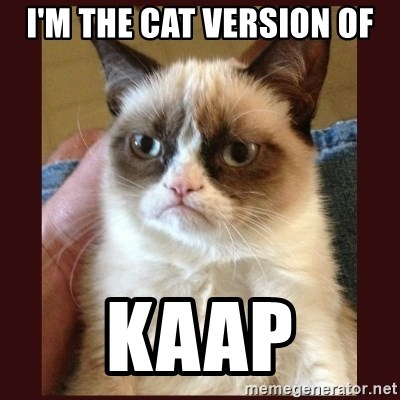 Tard the Grumpy Cat - I'm the cat version of Kaap