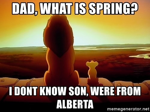 simba mufasa - Dad, What is spring? I dont know son, were from alberta