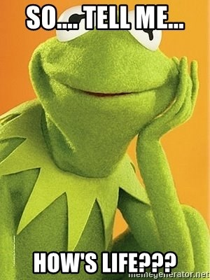 Kermit the frog - SO.... TELL ME... HOW'S LIFE???