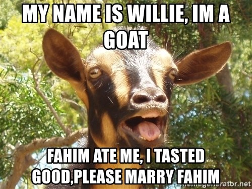 Illogical Goat - My name is Willie, im a goat  Fahim ate me, i tasted good,please marry fahim