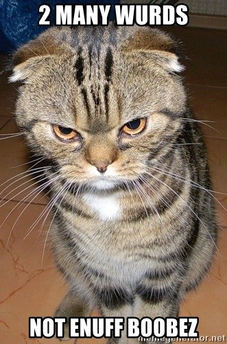 angry cat 2 - 2 many wurds not enuff boobez